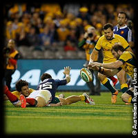 Australia France 2 McCalman disallowed try