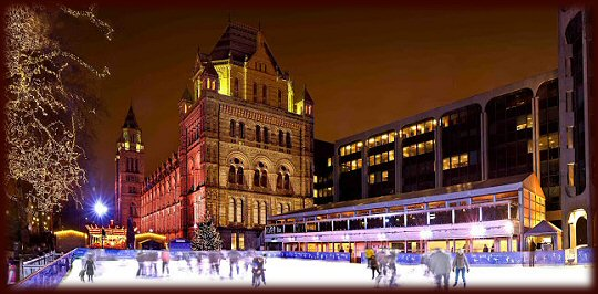 Natural History Museum Ice Rink 2012